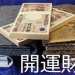 財布屋200万円入るシリーズ