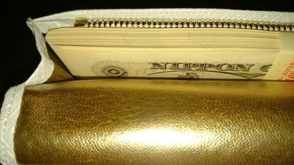 100万円の入った白蛇財布