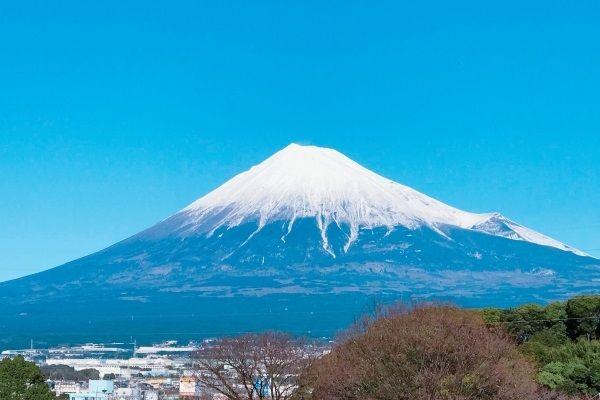 雄大な富士山を眺めている